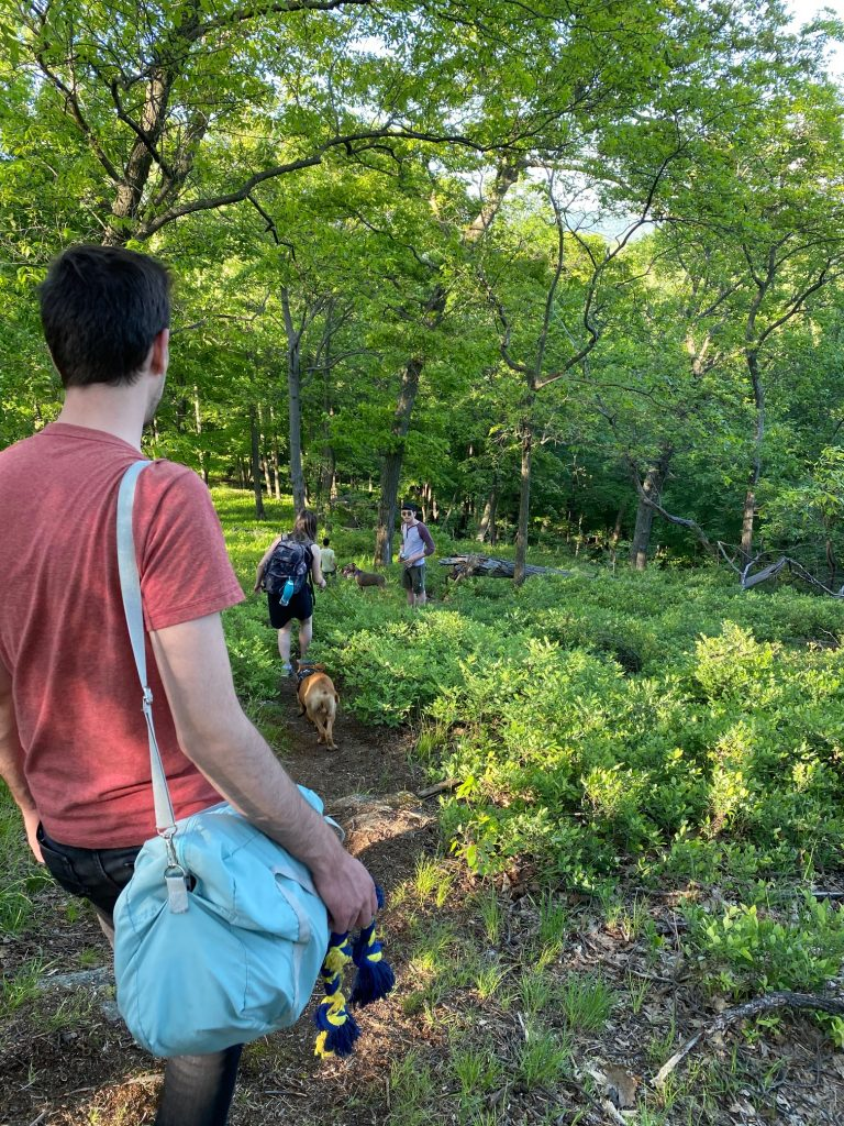 bear mountain state park hiking offtrail