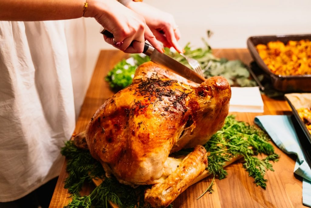 thanksgiving recipes for dogs conclusion