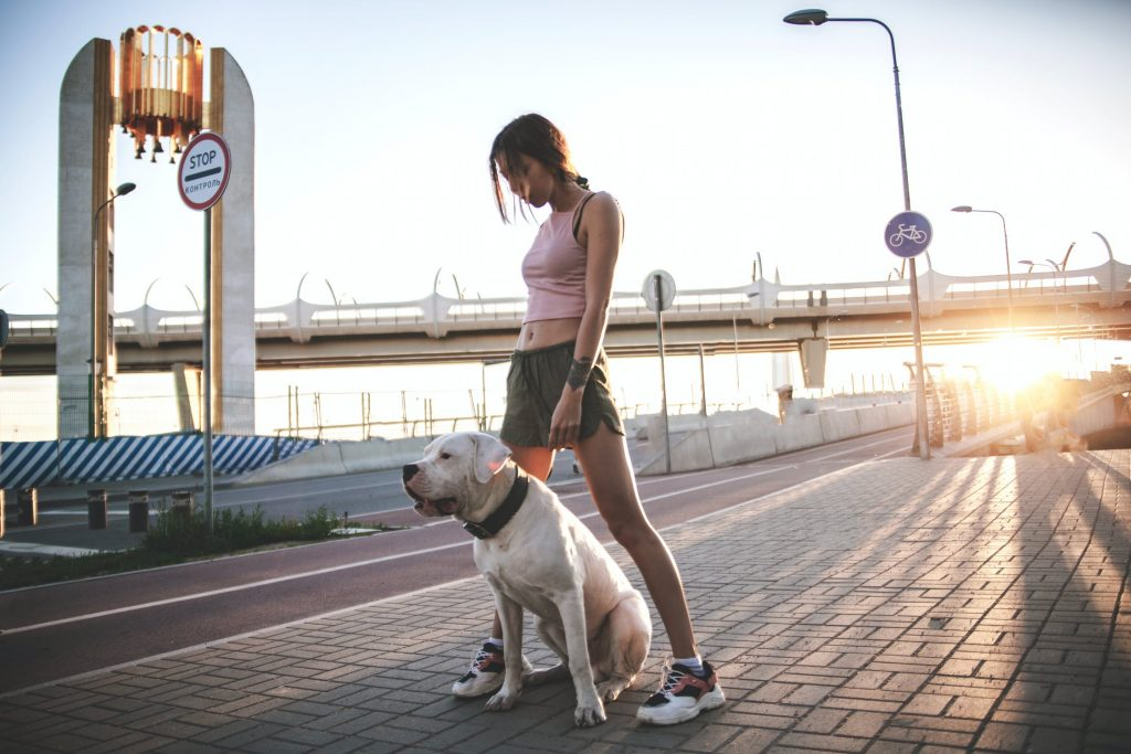 Places to Take Your Antisocial Dog solo walk